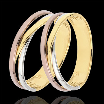 gifts Wedding Rings Duo Saturn Trilogy variation - Three golds - 9 carats