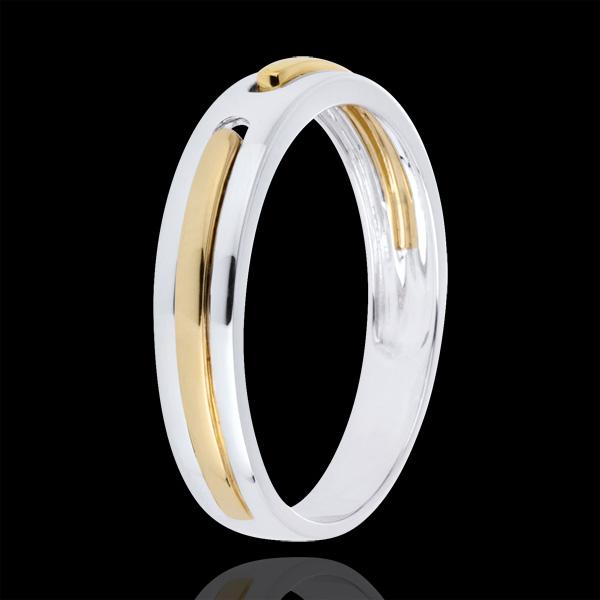 Alianza Promesa - todo oro - oro blanco y oro amarillo 18 quilates