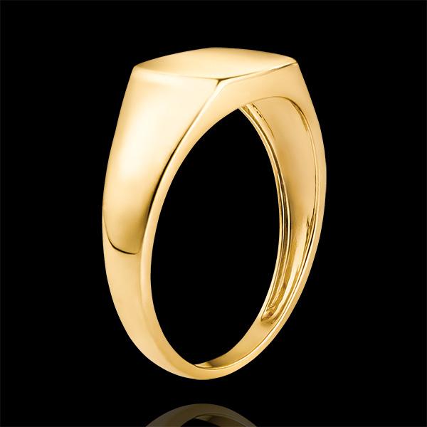 Anello Chiaroscuro - Chevalière Enea - oro giallo 9 carati