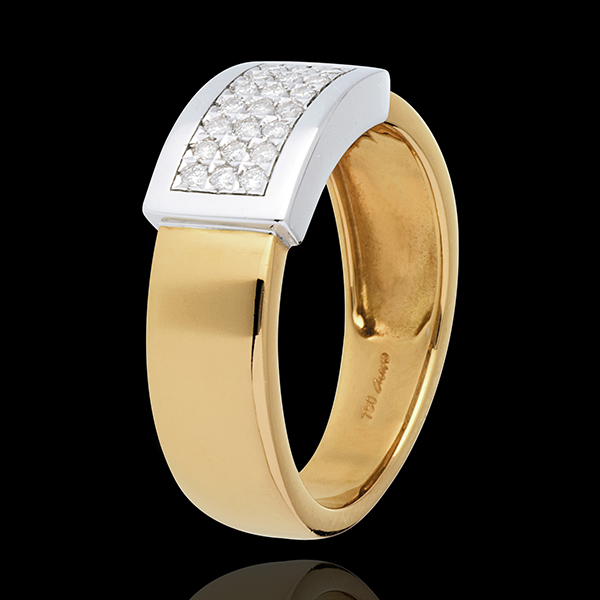 Belted ring yellow gold-white gold