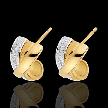 Attraction Earrings