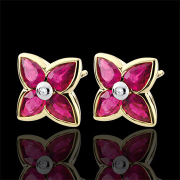 Beautiful Ruby Star Earrings