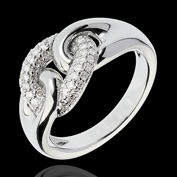 Infinite Connection Ring