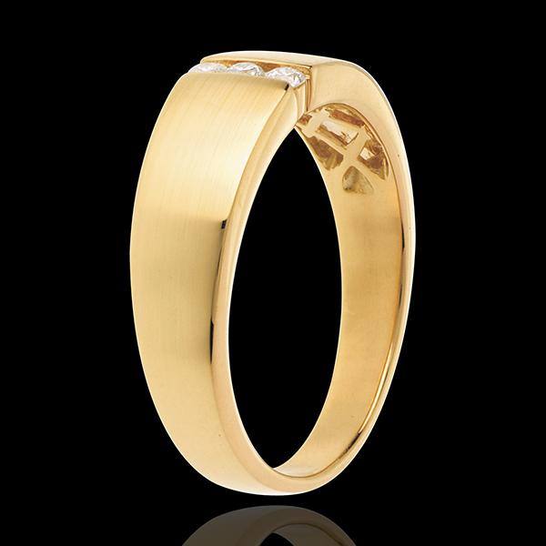 Infinity Trilogie Omhelzing - 18 karaat geelgoud - 3 Diamanten