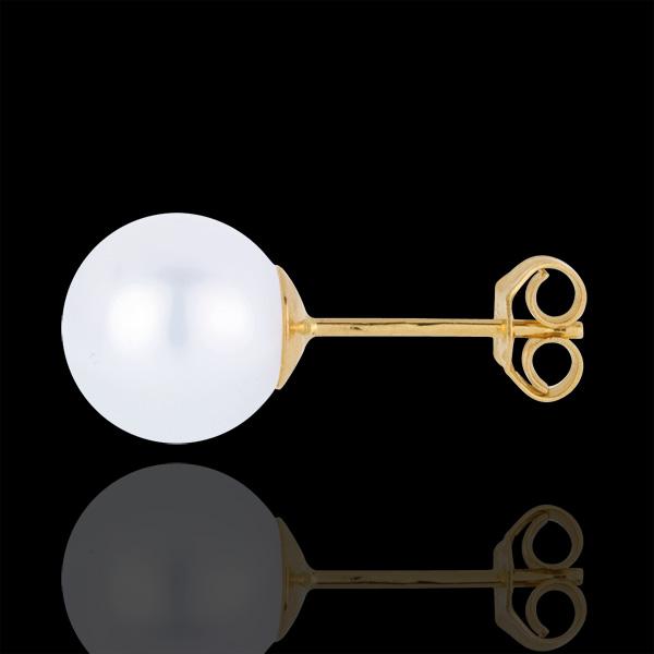Ohrringe Makellose Perle