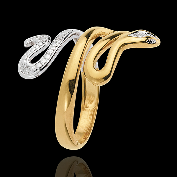 Ring Dagdromen - Kostbare Dreiging - 2 goudkleuren 9 karaat witgoud en geelgoud met Diamanten