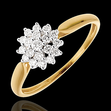 Ring Kaleidoscope - 18 karaat witgoud en geelgoud - 0.26 karaat - 19 Diamanten