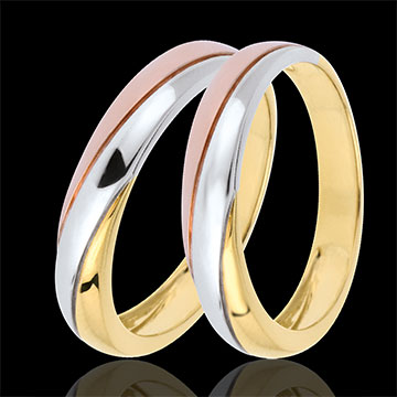 Wedding Rings Duo Saturn Trilogy - Three golds - 9 carats
