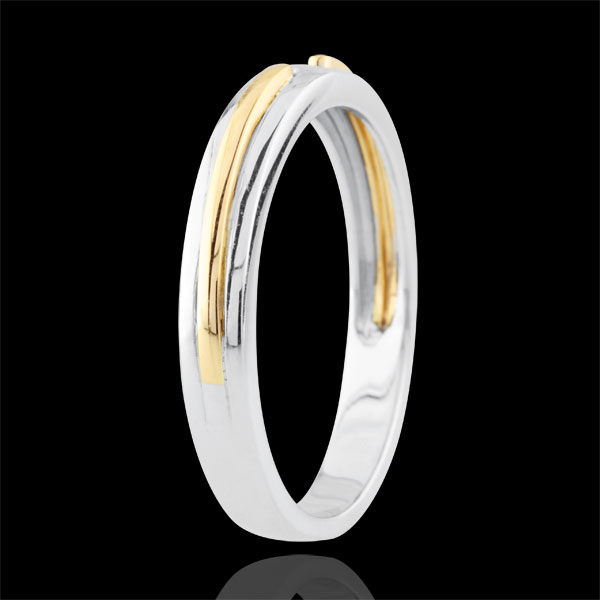 Wedding Ring Promise - white gold and yellow gold - small model - 18 carat