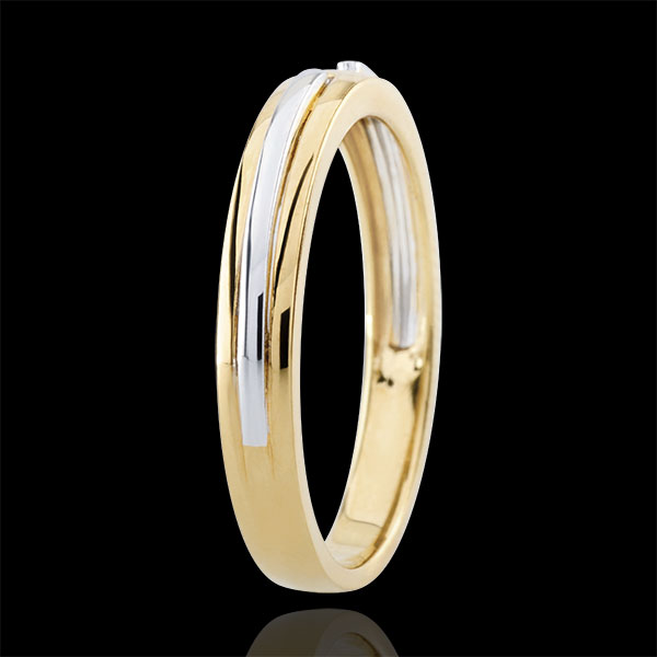 Wedding Ring Promise - yellow gold and white gold - small model - 18 carat