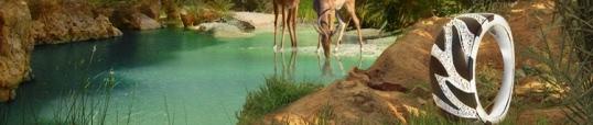 collection bijoux safari