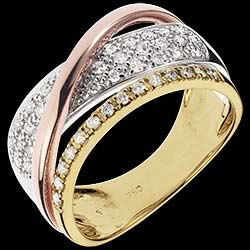 <a href=https://en.edenly.com/jewels/royal-saturn-ring,1221.html><span class='nom-prod-slide'>Ring Royal Saturn - 3 golds</span><br><span class='prixf'>£ 849</span> (-57%) </a>