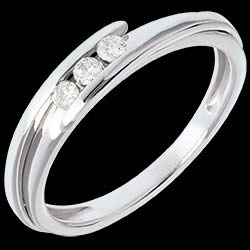 <a href=https://de.edenly.com/schmuck/trilogie-bipolaire-weissgold-diamanten,256.html><span class='nom-prod-slide'>Trilogie Ring Kostbarer Kokon - Anziehungskraft - Weißgold - 3 Diamanten 0.11 Karat - 18 Karat</span><br><span class='prixf'>450 &#x20AC;</span> (-46%) </a>