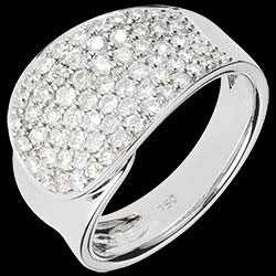 <a href=https://de.edenly.com/schmuck/ring-langue-de-diamants,1181.html><span class='nom-prod-slide'>Ring Langue de Diamants</span><br><span class='prixf'>2490 &#x20AC;</span> (-50%) </a>