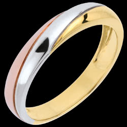 <a href=http://en.edenly.com/jewels/wedding-ring-timelessness-three-golds,668.html><span class='nom-prod-slide'>Saturn Trilogy Wedding Ring - three golds - 9 carat</span><br><span class='prixf'>£ 169</span> (-24%) </a>