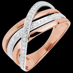 <a href=https://de.edenly.com/schmuck/ring-elite-in-wei-und-rotgold,726.html><span class='nom-prod-slide'>Ring Saturn Quadri - Rotgold - 18 Karat</span><br><span class='prixf'>450 &#x20AC;</span> (-49%) </a>