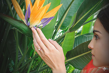Bague Oiseau de Paradis - un rang - or rose 9 carats et saphir rose