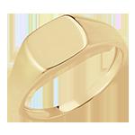Bague Clair Obscur - Chevalière Énée - or jaune 9 carats