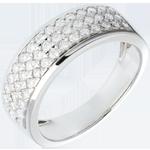 Goldschmuck Ring Sternbilder - Himmelskörper - Kleines Modell - Weißgold - 0.63 Karat - 45 Diamanten