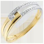 Geschenk Ring Vereinigung bicolor