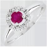 regalo donna Anello Clévia - Oro bianco - 9 carati - 12 Diamanti - Rubini