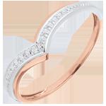 Bague Ailes précieuses - or blanc et or rose 9 carats