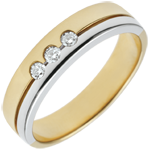 on-line buy Bi-colour Gold Olympia Trilogy Wedding Band - Average Model - 18 carats
