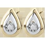 Boucles d'oreilles Larmes d'antilope - puces or blanc et or jaune 9 carats
