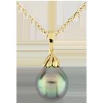 Ciondolo Goccia di Perla - Oro giallo - 9 carati