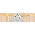 Online Kauf Collier Flohdiamant in Gelb- und Weissgold