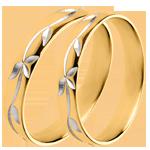 Dúo de alianzas Frescura- Hiedra grabada - oro amarillo - 18 quilates