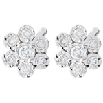 gifts women Earrings Freshness - Flower Snowflake variation - white gold