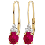 wedding Exquisite Diamond and Ruby Earrings