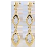 Ohrringe Charme des Pfaus - Bicolor