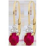 Orecchini Exquises - Oro giallo - 9 carati - 6 Diamanti - 2 Rubini