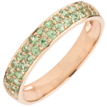 gold jewelry Ring Bird of Paradise - two lines - rose gold and tsavorite