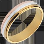 kaufen Ring Gravitation