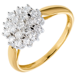 Ring Kaleidoscope pavézetting - 0.61 karaat - 19 Diamanten - 18 karaat witgoud en geelgoud