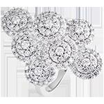 Ring Leven - Zwier - wit goud 9 karaat en diamanten