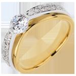 Goldschmuck Ring nach Maß 30018