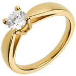 Juwelier Ring nach Maß 30046