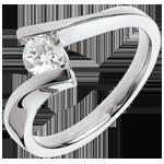 Geschenk Ring nach Maß 30110