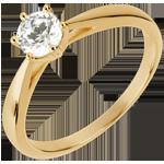 Geschenk Ring nach Maß 30228