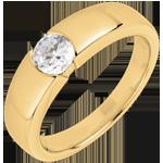 Juwelier Ring nach Maß 30271