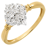Ring Raute - 0.33 Karat - 16 Diamanten