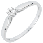 Ring Riet 6 Diamanten klauwen - 0.07 karaat