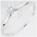 Juweliers Ring Riet 6 Diamanten klauwen