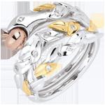 kaufen Ring Spaziergang der Sinne - Verbotene Frucht - Dreierlei Gold
