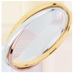 Hochzeit Trauring Saturn Rotation - Kleines Modell - Dreierlei Gold, 3 Ringe