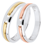 gifts woman Wedding Rings Duo Promise - all gold - yellow and pink gold